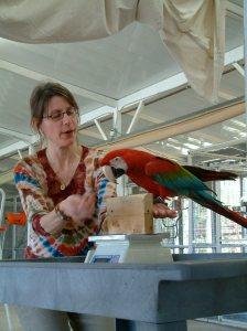 Companion Parrot Workshop January 2005 655
