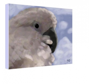 umbrella-cockatoo-by-janet-bray-giclee-print